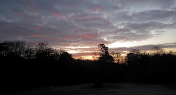 345   winters dawn