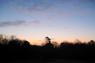 346   winters dawn