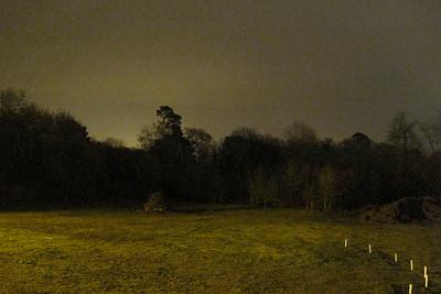 331   paddock at night
