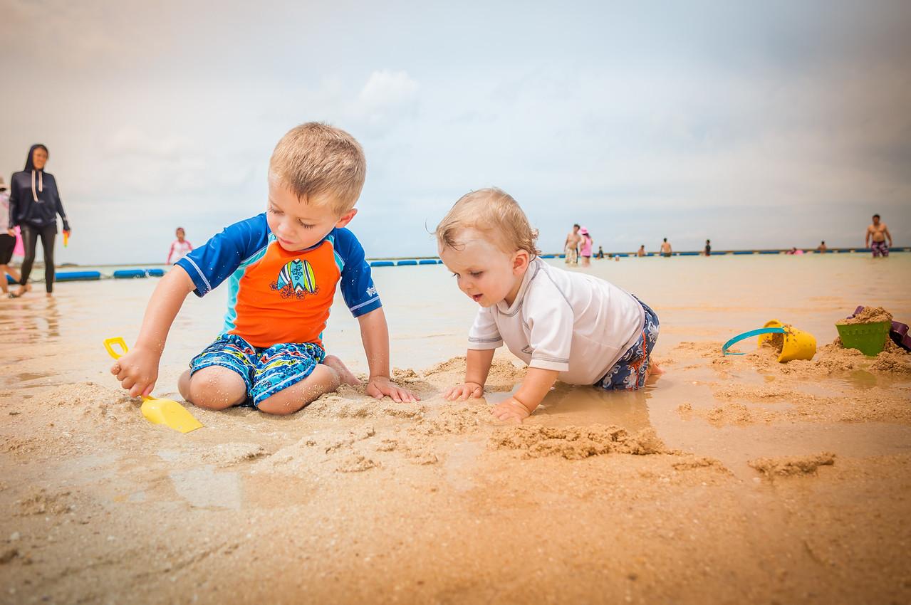 Tropical Beach - Aug 29