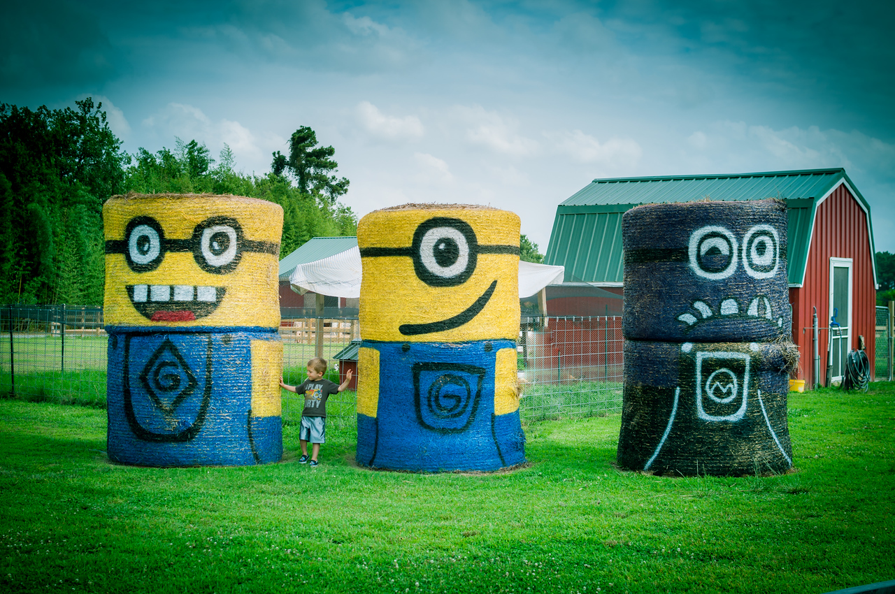 Minions on the Farm - July 8