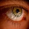 Eye Lights 19 / 365