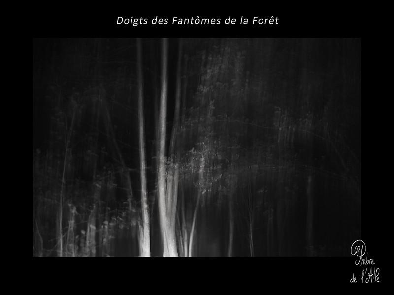 Doigts des Fantômes de la Forêt