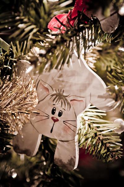 352_365 Cat in a Tree