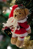 351_365 Santa Bear