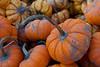 310_365 Pumpkins