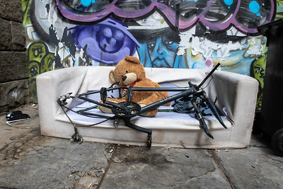 Teddy and bike