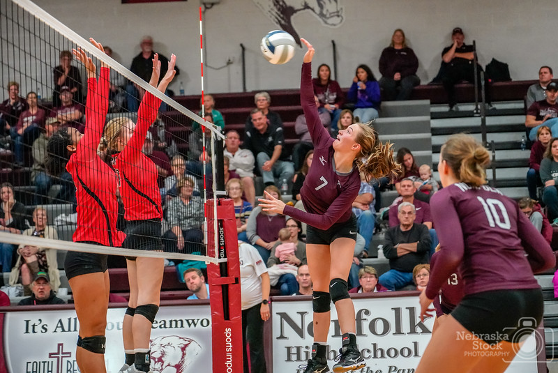 10-9-2018<br /> 282/365<br /> Ali Sovereign(7) of Norfolk goes up for a spike against Lincoln High Tuesday night in Norfolk. The Lady Panthers swept the Lady Links 25-18,25-19,25-18.<br /> Photo taken with a Sony A9 with a Sony FE 24-105<br /> ISO 12800<br /> 1/1000th at F4<br /> (176636)