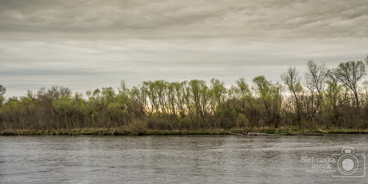 5-2-2018<br /> 122/365<br /> The cottonwoods along the Elkhorn River are starting to green up in Madison County. After the winter that Northeast Nebraska had, this is a beautiful site for all eyes to see. <br /> Photo taken with a Sony A6300 with a Sony 18-200<br /> ISO 800<br /> 1/250th at F8<br /> (78596)