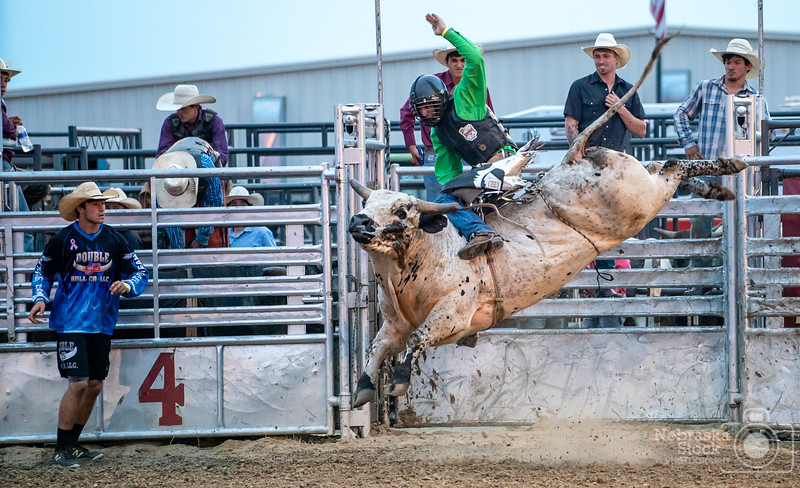 8-3-2018<br /> 215/365<br /> A bullrider attempts to cover his bull during the Extreme Bull Tour event held at the Pierce County Fair. <br /> Photo taken with a Sony A9 with a Sony 70-200<br /> ISO 8000<br /> 1/640th at F4<br /> (136827)