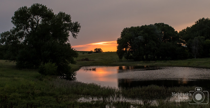 7-2-2018<br /> 183/365<br /> The sun sets on a small farm pond in Pierce County Monday evening. <br /> Photo taken with a Nikon D500 with a Nikon 28-70<br /> ISO 1000<br /> 1/800th at F8<br /> (112364)