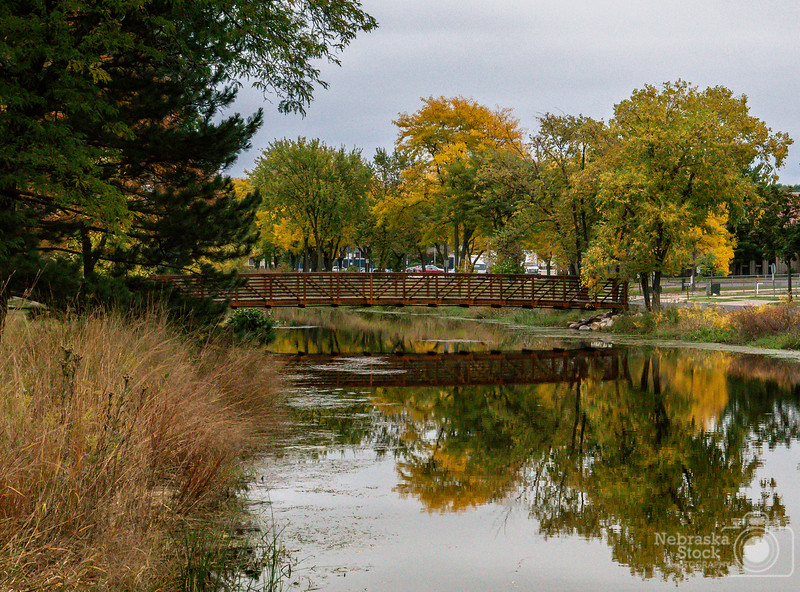 10-05-2018<br /> 278/365<br /> The fall colors were amazing in Madison,WI this past weekend. <br /> Photo taken with a Sony A6300 with a Sony 18-250<br /> ISO 1600<br /> 1/250th at F8<br /> (173082)
