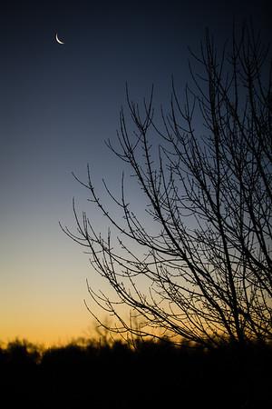 sunrise, crescent moon