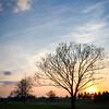 sunset, standing apart