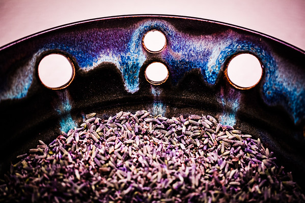 lavender ascending