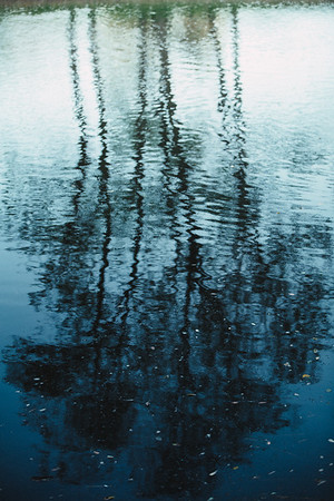 305 - photograph water