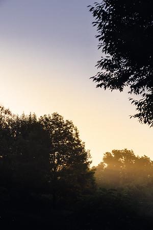231 - a sunset