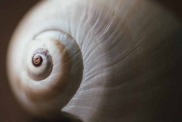 212 - a spiral