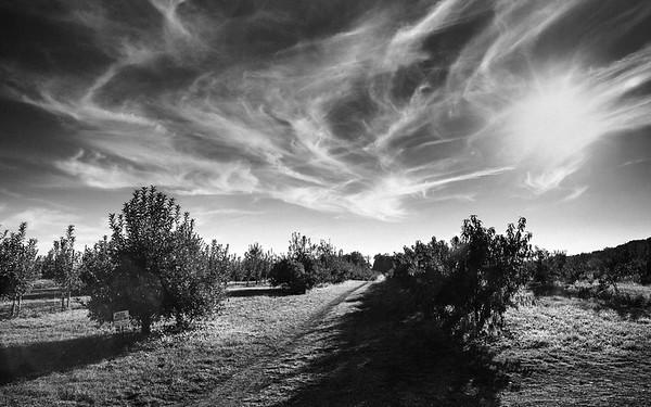 285 - a landscape