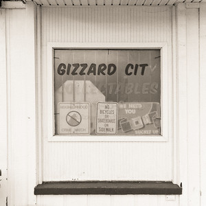 Gizzard City Collectables