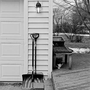 Lamp, Shovels, Kitty