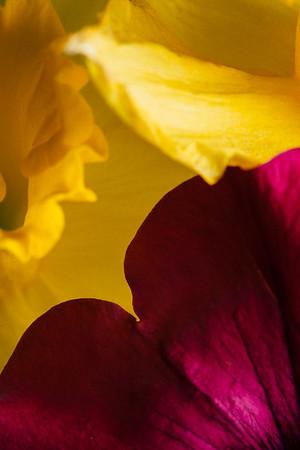 012: Contrast colors