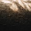 039: Photograph an interrupted pattern