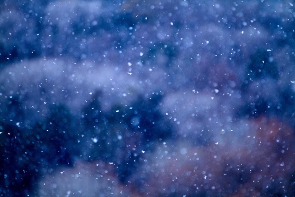 46 - my 365; Snow