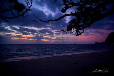 365 Sunrises 2011