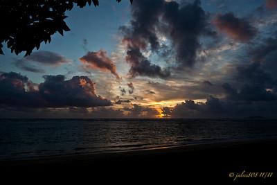 Day 309 of 365, November 5, 2011