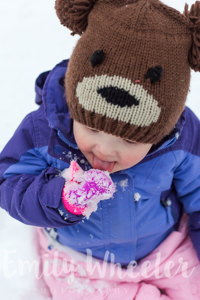 Day 352 | December 17th<br /> Yum, fresh snow!