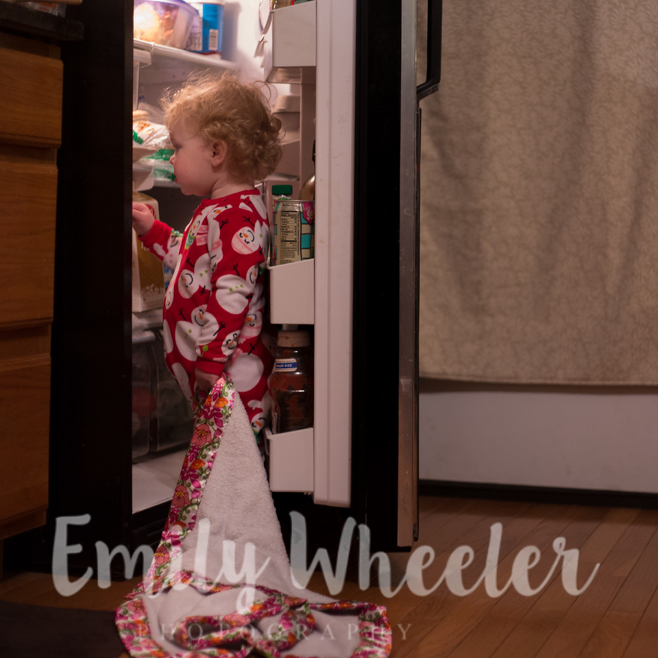 Day 334 | November 29th<br /> Probably finding her yogurt.