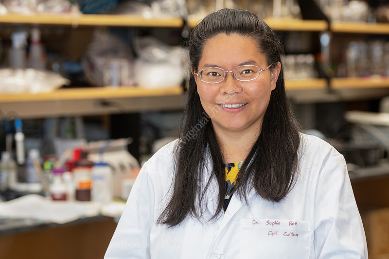 """Dr. Xuefang """"Sophie"""" Ren, research assistant professor in the Department of Neuroscience poses for a enviormental portrait in her lab BMRC, August 12, 2020. (WVU Photo/Greg Ellis)"""