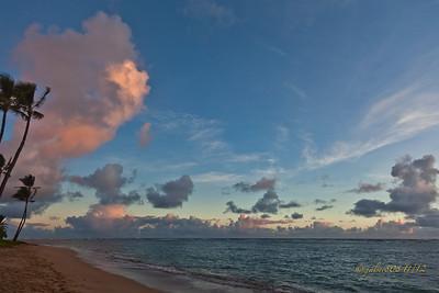 Day 313 of 366, Nov 8, 2012