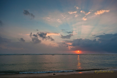 Day 310 of 366, Nov 5, 2012