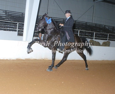 CLASS 7  RACKING SPECIALTY ACTION OPEN