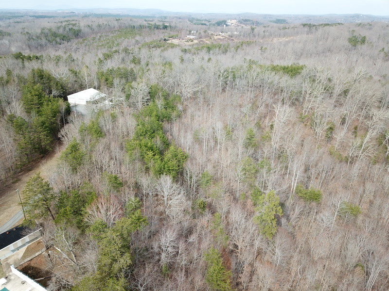 Tract 1 - nicely wooded acreage for development