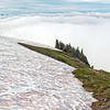 Where snow line meets tundra and clouds hover below Mount Adams.<br>My Epic Hikes Photo Album-2016.<br>https://connect.garmin.com/modern/activity/1238784268<br>Hard core 9-mile/4700' elevation gain hike through snow fields to the 10,000-foot level of Mount Rainier-Camp Muir round-2.<br>Next time I hike - it's scheduled to be the real deal. Past Camp Muir (halfway point) and all the way to the summit of Mount Rainier, beyond 14,000-feet. I can only hope the weather will be as spectacular as these Muir hikes.<br>The last 3 weekends have included 2 round-trip hikes to Rainier/Camp Muir and a 28-mile wilderness hike with mountain pack. In between- a return to running, disciplined yoga and intense strength training. I'm physically and mentally prepared to summit Rainier. My self-confidence is where I need it to be. I've done my part. Trained with/learned from experienced climbers, invested in the right gear. Now the mountain has to come to me…acceptable weather, climbing team chemistry, etc. I've done everything within my power to increase the odds from the as advertised, only 50% success rate for climbers attempting to summit Rainier. It's GO time!<br><br>WA-rainier_muir02jul2016I8213