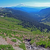"""Goat Rocks—Goat Lake Hike/CampWA-20aug2016. <br>https://connect.garmin.com/modern/activity/1315013895<br>Goat Rocks Wilderness in the Snoqualmie/Gifford Pinchot National Forest on the crest of the Cascade Range. <br>Hot Hike. One of the hottest days of 2016. Bill and I embarked on Snowgrass Trail #96 and reached camp a little over 5-miles later. Did a quick set-up of tents and then traversed another 2+miles on the Lily Basin Trail to Goat Lake. The aqua-marine waters were tempting in the afternoon sun, but we elected to only cool our heels and not take the deep dive into the glacier waters, like several hikers around us. The vista views from trail #86 were incredible. I felt like I needed to keep my cameras on panoramic mode. Crossing waterfalls, looking up at mountain goats on the ledges of Hawkeye Point, gazing across the lush green/flowers blooming valley at Mount Adams. 10-miles/2500' elevation gain of hike in a photographers paradise. Back at base camp, we ate dinner around the campfire and talked world affairs with our Russian neighbors. A very memorable, very cool all-around experience. I awoke around 2am thinking someone was shining a light into my tent. Poked my head out and was greeted by a shockingly bright full moon and spectacularly clear star-field that reminded me of the night I summited Rainier. Little did I know, my fav take-away from this hike/campout (photography """"magic moment"""") was about to happen at sunrise on the Pacific Coast Trail…<br>Mt Adams<br><br>WA-goat_rocks-20aug2016i8980"""