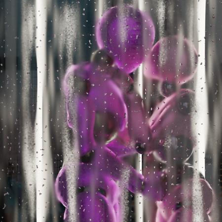 Violet Love