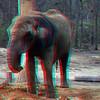 Zoo_1-25-16_001