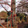 Zoo_1-25-16_025