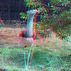 Zoo_1-25-16_017