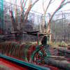 Zoo_1-25-16_008