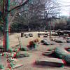 Zoo_1-25-16_004