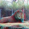 Zoo_1-25-16_009