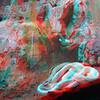 Zoo_1-25-16_026