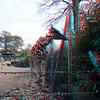 Zoo_1-25-16_003