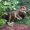 Dilophosaurus01