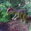 Dilophosaurus06